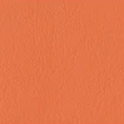 Hathaway Tangerine